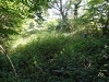 Picture Land For Sale Grange Road Solihull